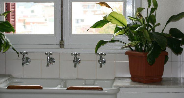 Planten in de badkamer? Het kan! – woondetective.nl