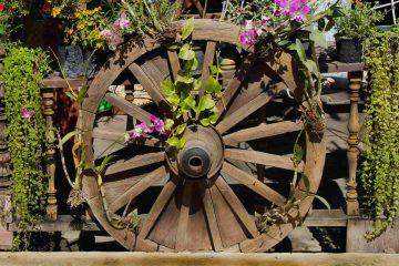 tuin van vandaag